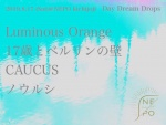 Luminous Orange, CAUCUS, 17歳とベルリンの壁 (17 years old and Berlin Wall), ノウルシ (Nourushi)