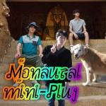 Monoaural mini-plug, papalion, 野村洋祐, 滑稽のドア, シュク (bluevision)