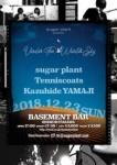 sugar plant, tenniscoats, Kazuhide Yamaji