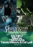MikaTen, Tabata Mitsuru + Cal Lyall, SACHIKO, Timisoara
